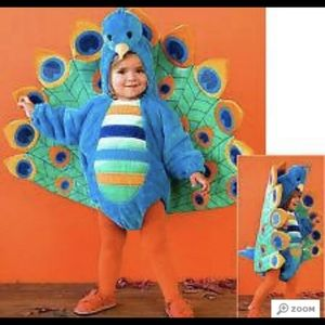 Peacock Costume Toddler Size 2-3T
